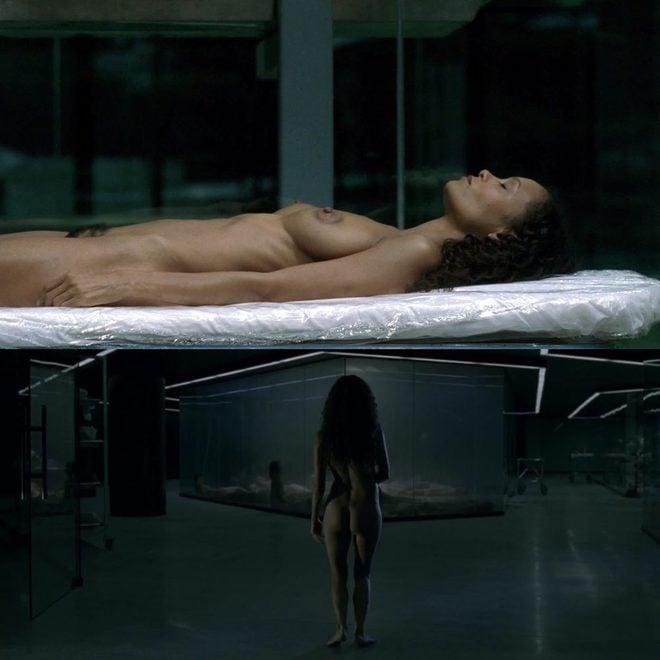 Thandie Newton Desnuda En Westworld En Ecartelera