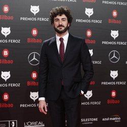 Miki Esparbé en la alfombra roja de los Premios Feroz 2019