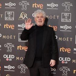 Pedro Almodóvar en los Premios Goya 2019