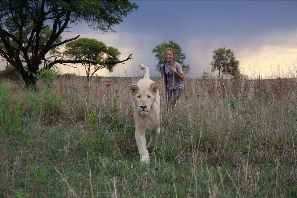 Mia y el león blanco, fotograma 1 de 20