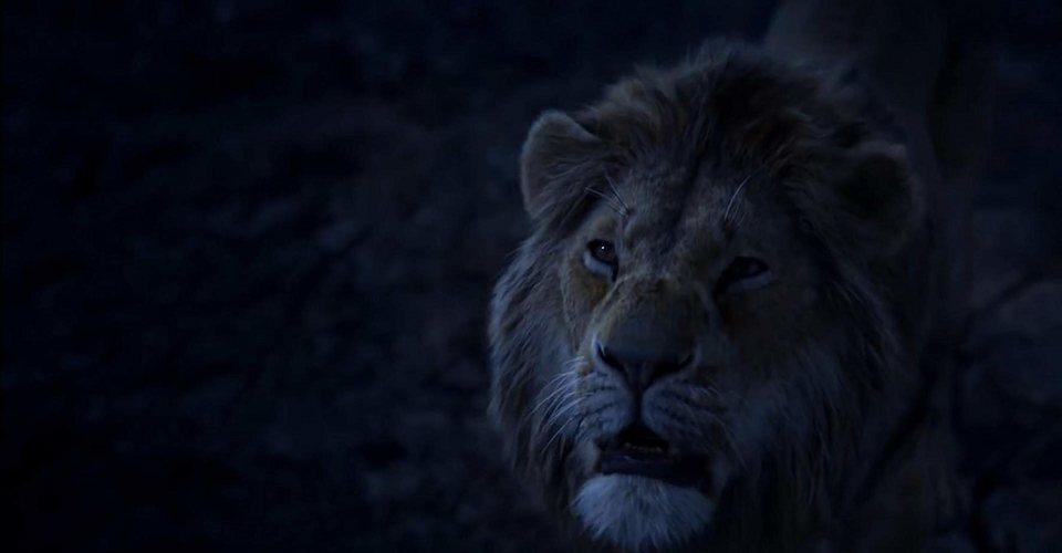 El Rey León, fotograma 6 de 33