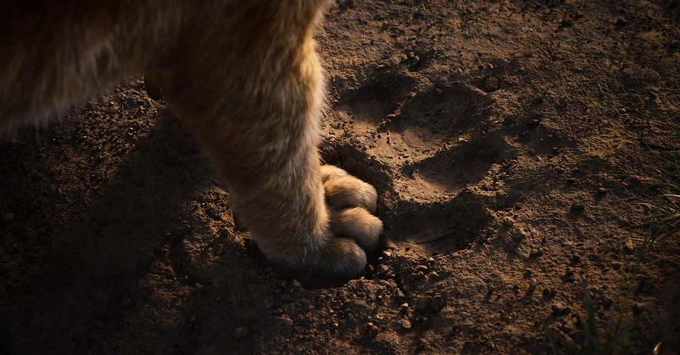 El rey león, fotograma 4 de 33