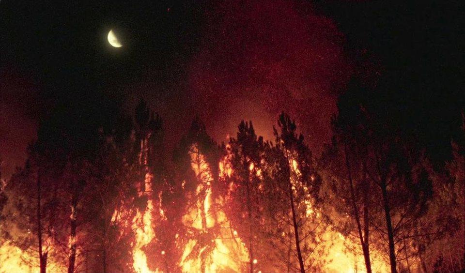 Lo que arde, fotograma 1 de 13