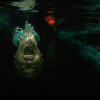 A 47 Metros 2 El Terror Emerge 2019 Película Ecartelera