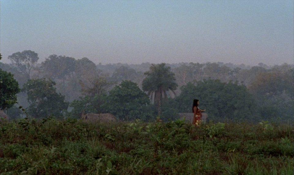 El canto de la selva, fotograma 5 de 8