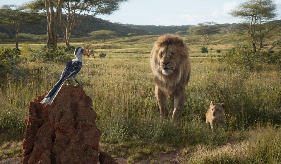 El Rey León, fotograma 12 de 33