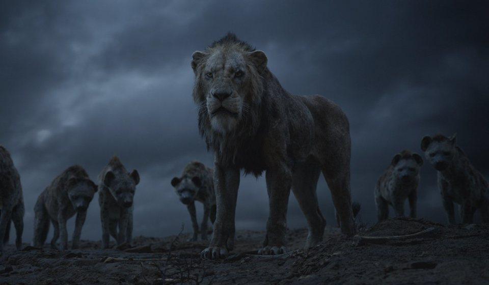 El rey león, fotograma 11 de 33