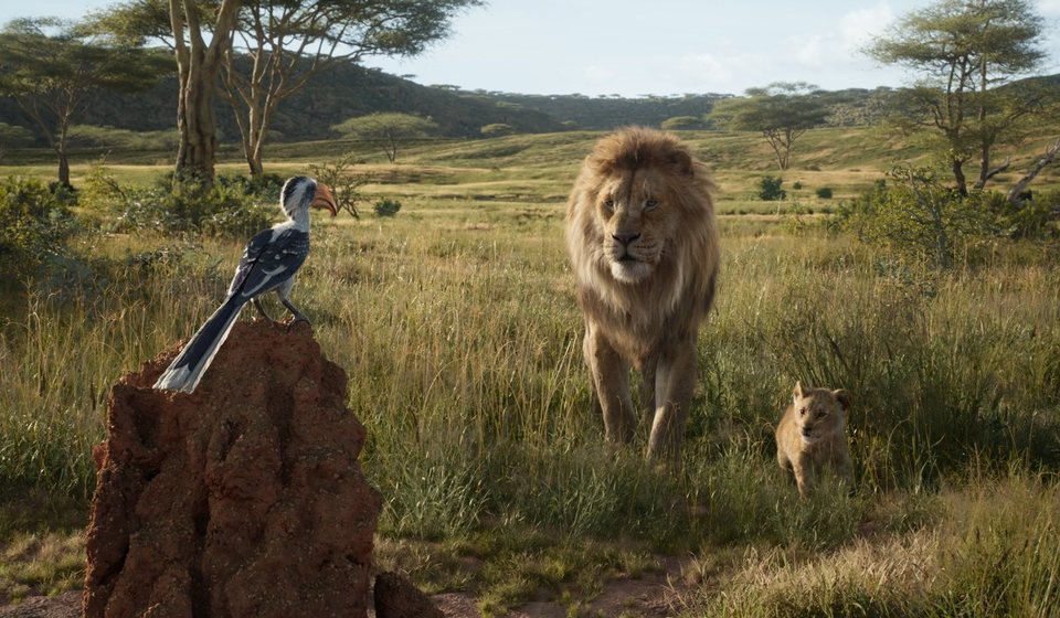 El Rey León, fotograma 10 de 33