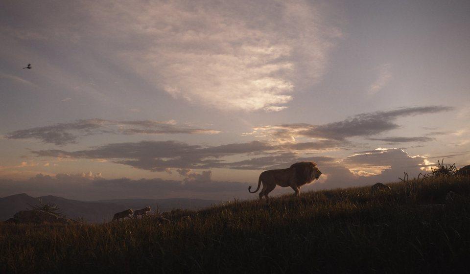 El rey león, fotograma 9 de 33