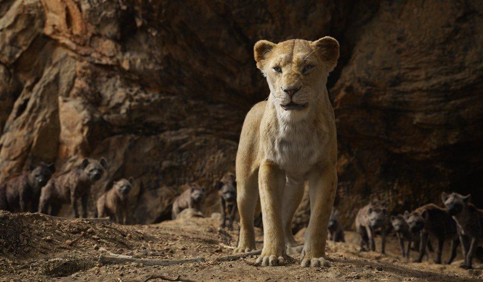 El rey león, fotograma 25 de 33
