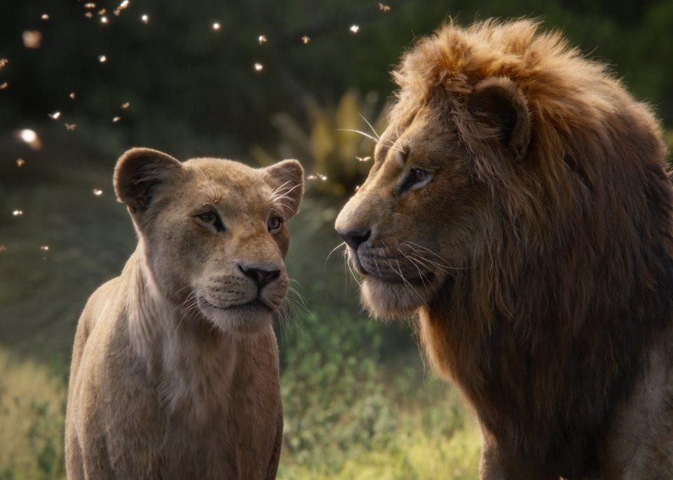 El rey león, fotograma 23 de 33
