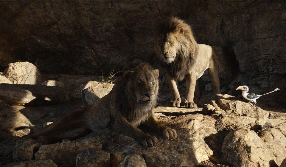 El Rey León, fotograma 22 de 33