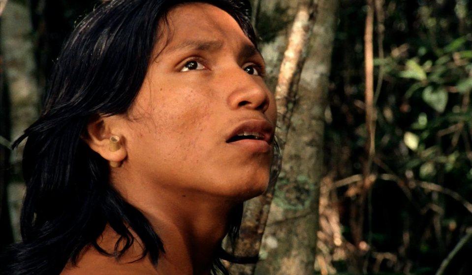 El canto de la selva, fotograma 8 de 8