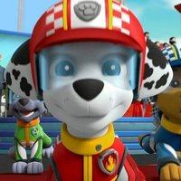 Paw Patrol: Ready, Race, Rescue!