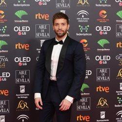 Pablo Alborán en la alfombra roja de los Goya 2020