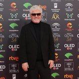 Pedro Almodódvar en la alfombra roja de los Premios Goya 2020