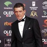 Antonio Banderas en la alfombra roja de los Premios Goya 2020