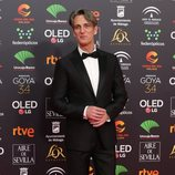 Ernesto Alterio en la alfombra roja de los Premios Goya 2020