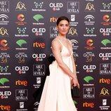 Bárbara Lennie en la alfombra roja de los Premios Goya 2020