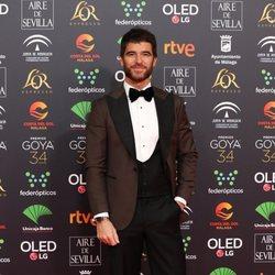 Alfonso Bassave en la alfombra roja de los Premios Goya 2020