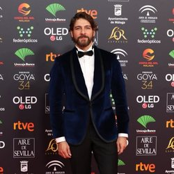 Félix Gómez en la alfombra roja de los Premios Goya 2020