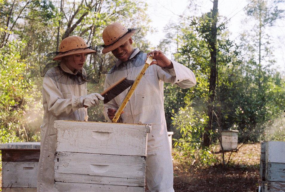 La vida secreta de las abejas, fotograma 1 de 19