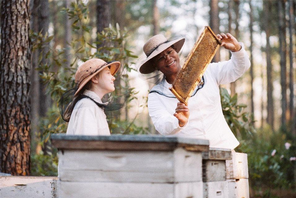 La vida secreta de las abejas, fotograma 2 de 19