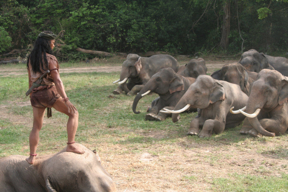 Ong Bak 2: La leyenda del Rey Elefante, fotograma 13 de 15