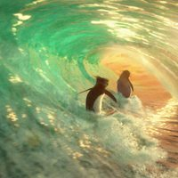 Locos por el surf