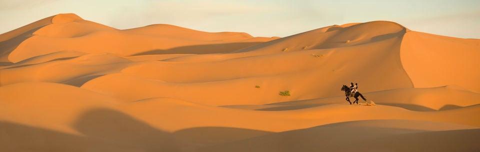 Prince of Persia: las arenas del tiempo, fotograma 37 de 47