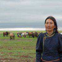 Los dos caballos de Genghis Khan