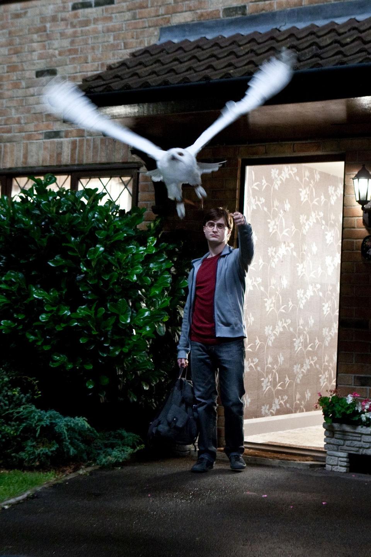 Harry Potter y las reliquias de la muerte: parte 1, fotograma 4 de 30
