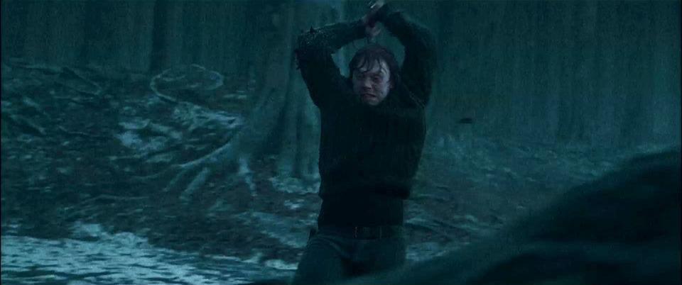 Harry Potter y las reliquias de la muerte: parte 1, fotograma 18 de 30
