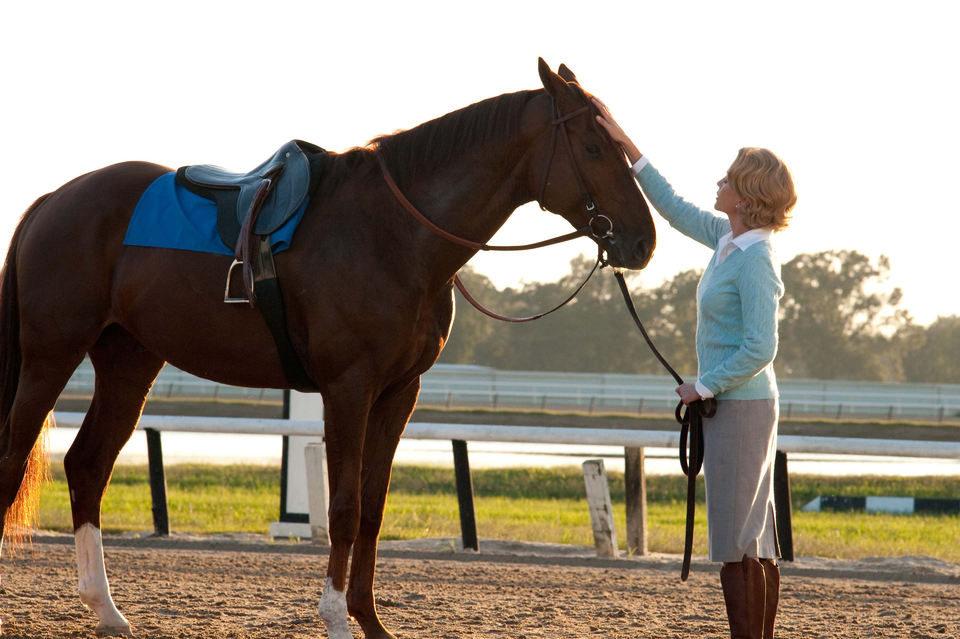Campeón (Secretariat), fotograma 3 de 29