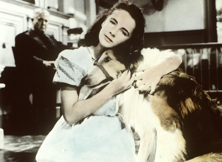 Elizabeth Taylor en 'El coraje de Lassie'