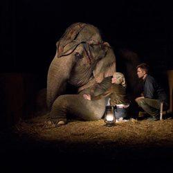 Marlena y Jacob cuidan a un elefante