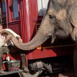 Robert Pattinson congenia con un elefante