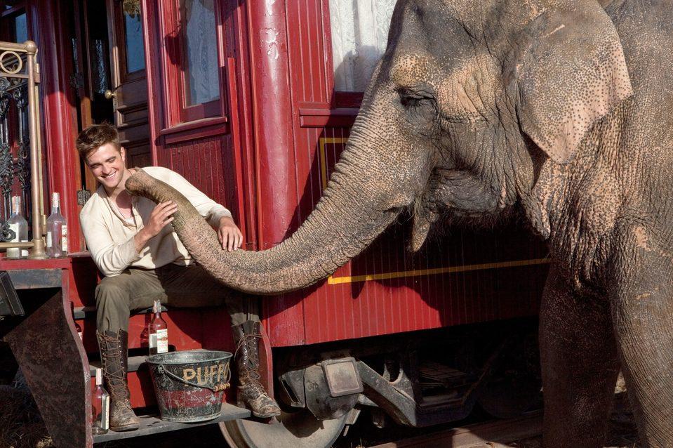 Agua para elefantes, fotograma 3 de 17