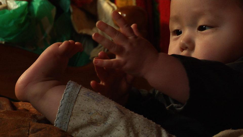 Bebés, fotograma 18 de 20