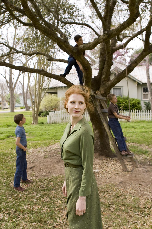 El árbol de la vida, fotograma 25 de 78