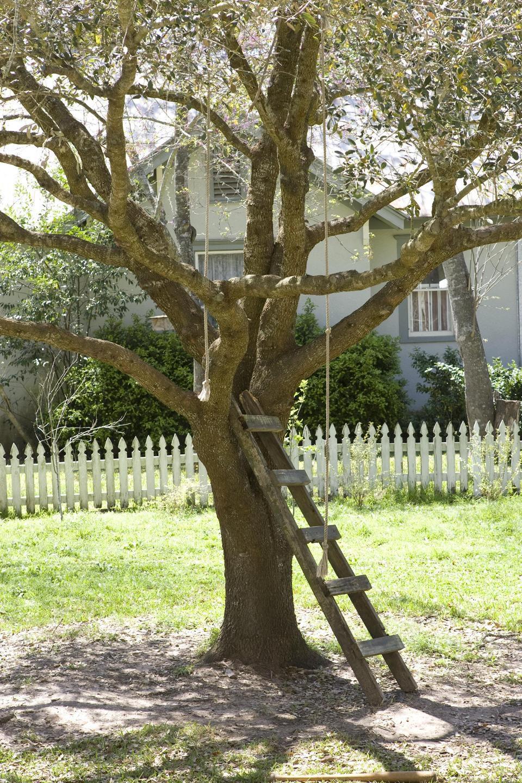 El árbol de la vida, fotograma 32 de 78