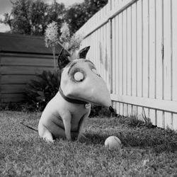El perro Sparky, protagonista de 'Frankenweenie'