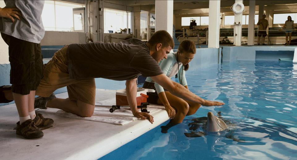 La gran aventura de Winter el delfín, fotograma 31 de 33