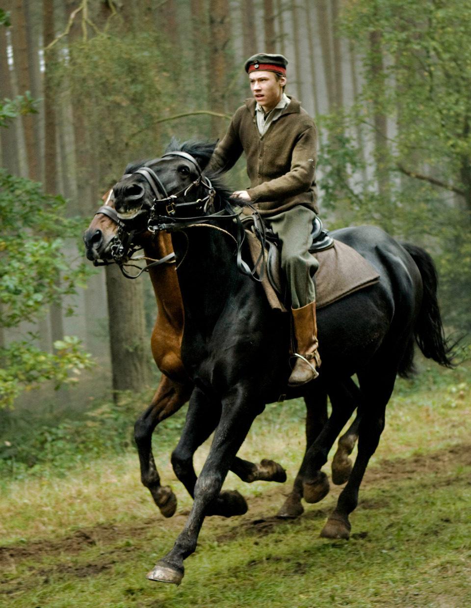 War Horse (Caballo de batalla), fotograma 23 de 74