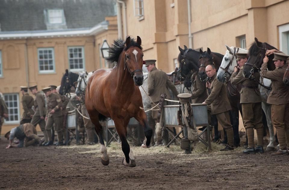 War Horse (Caballo de batalla), fotograma 35 de 74