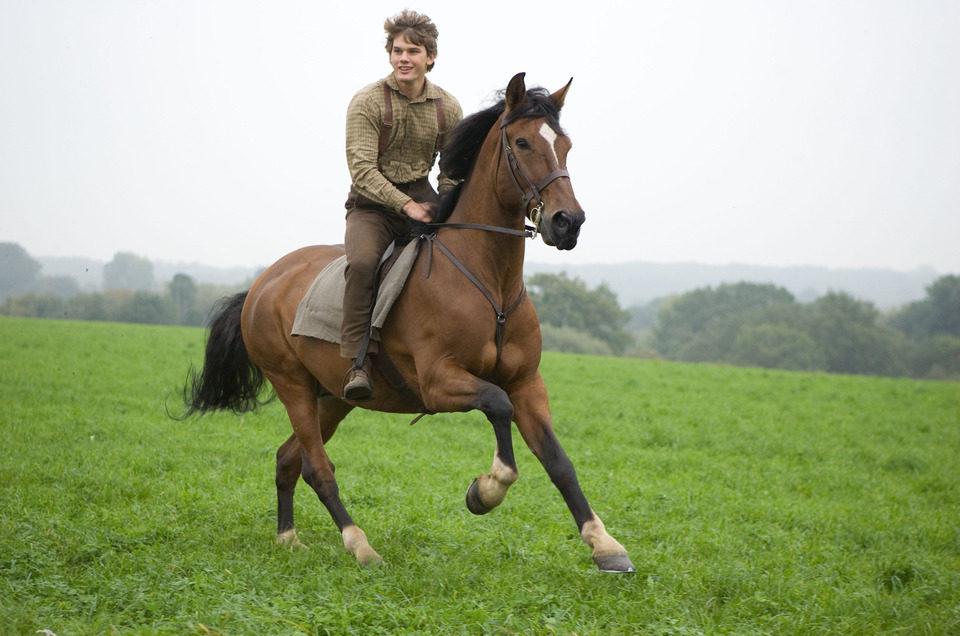 War Horse (Caballo de batalla), fotograma 47 de 74