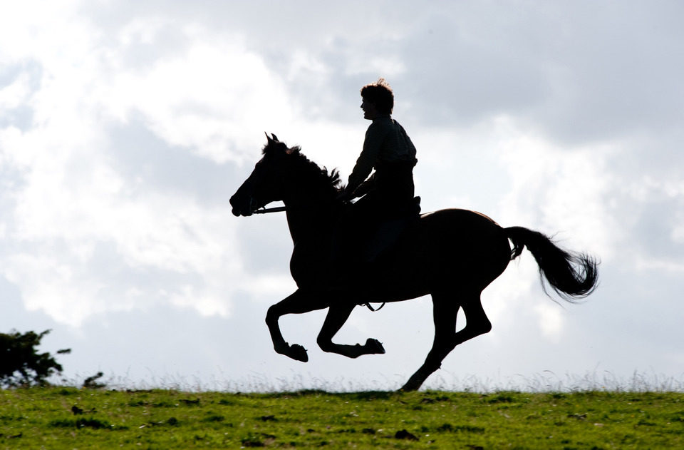 War Horse (Caballo de batalla), fotograma 57 de 74