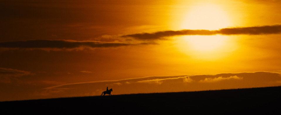 War Horse (Caballo de batalla), fotograma 67 de 74
