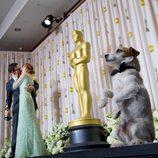 Uggie, el perro de 'The artist', posa mientras Michel Hazanavicius besa a su novia, Bérénice Bejo