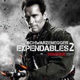 Arnold Schwarzenegger en 'Los mercenarios 2'